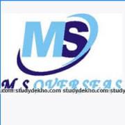 M S Overseas Logo
