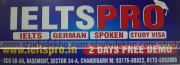 IELTS PRO Logo