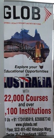 GLOB OVERSEAS EDUCATION Logo