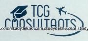 TCG CONSULTANTS Logo