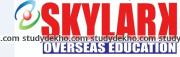 Skylark Education System Logo