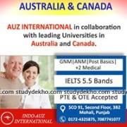 Indo Auz international Gallery