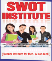 Swot Institute(Foundation Classes Wing) Logo