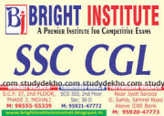 Bright Institute  Logo