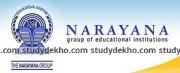 Narayana IIT/PMT Academy Logo