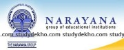 Narayana IIT & PMT Academy Logo