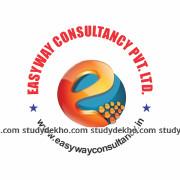 Easyway Academy Logo