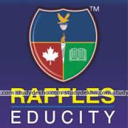 Raffles Educity Logo