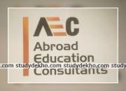 AEC Consultant Logo