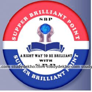 Supper Brilliant Point Logo