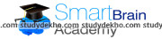 Smart Brains Academy Logo