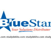Blue Star Immigration Pvt. Ltd. Logo