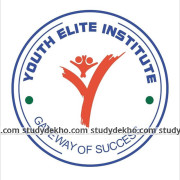 Youth Elite Institute Logo