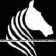 White Horse Education Logo
