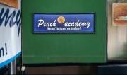 Peach Academy Logo