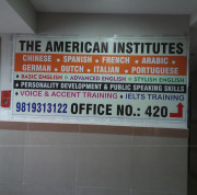 THE AMERICAN INSTITUTE Logo