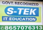 S-TEK Logo