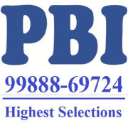 PBI Institute Logo