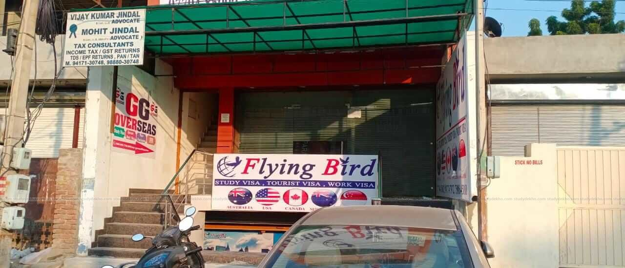 Flying Bird Ielts and Immigration Gallery