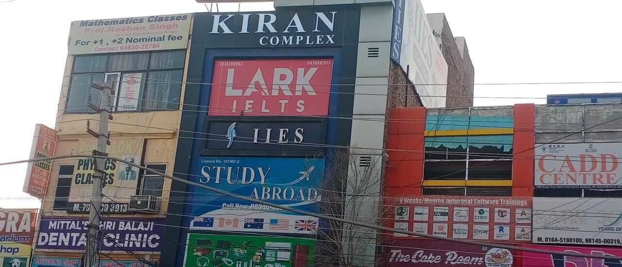 Lark IELTS Gallery