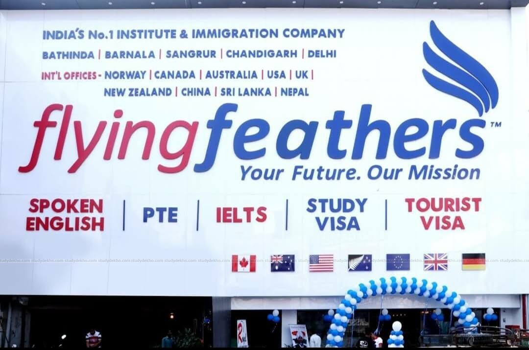 Flying feathers Logo