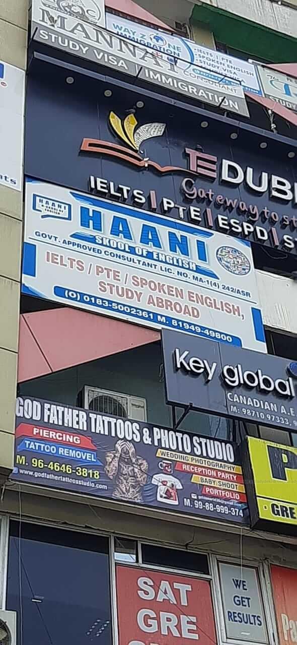 Haani Skool of English Logo