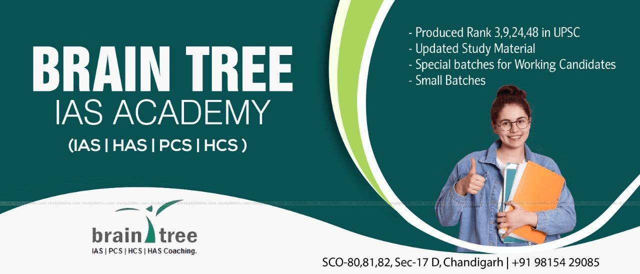 Brain Tree  IAS Academy Logo