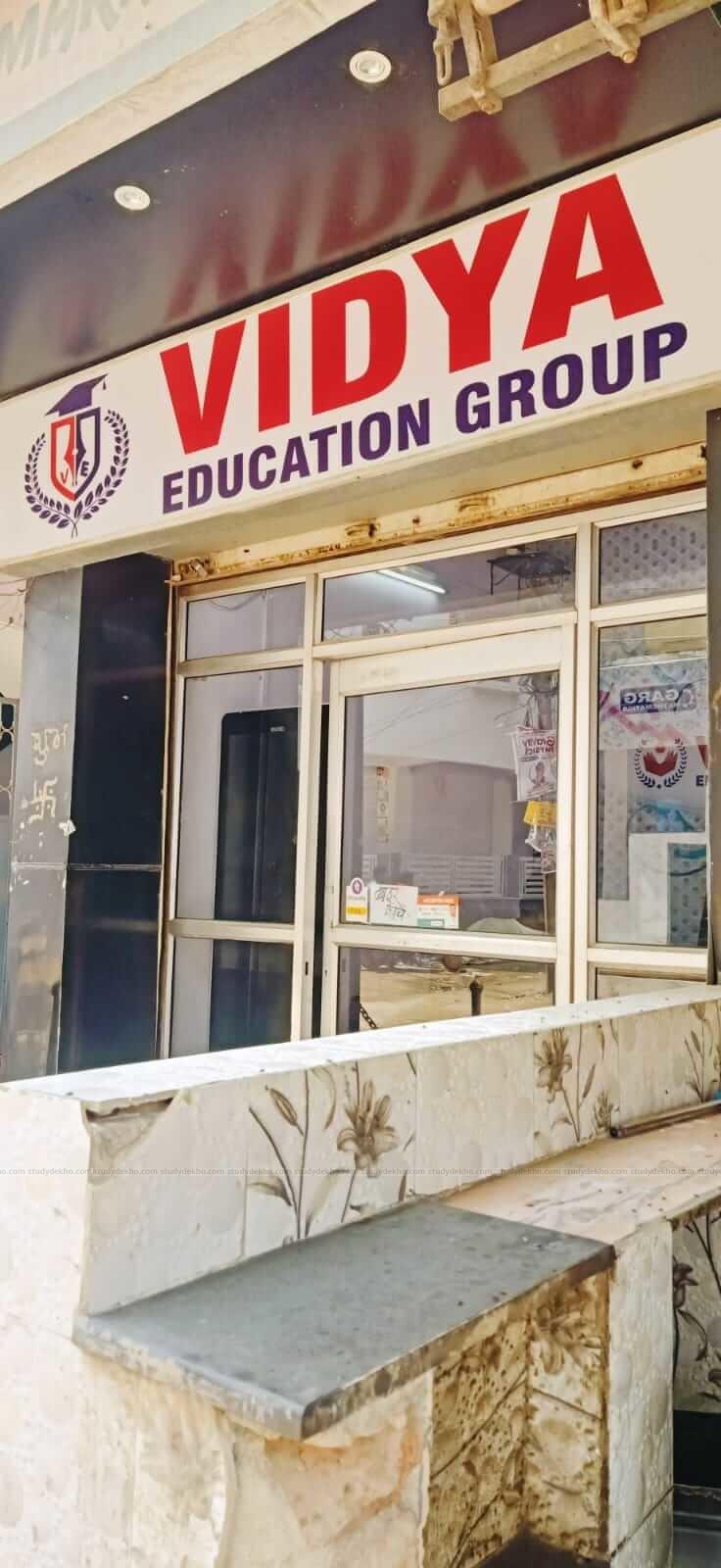 Vidya Education Group Logo